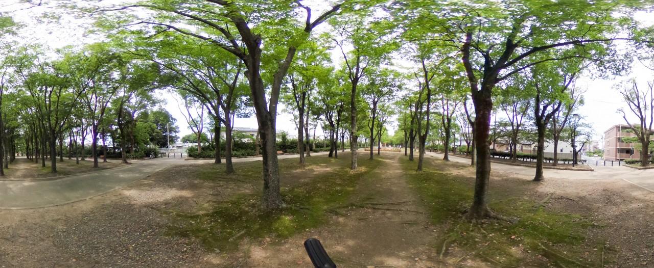 全球360度写真